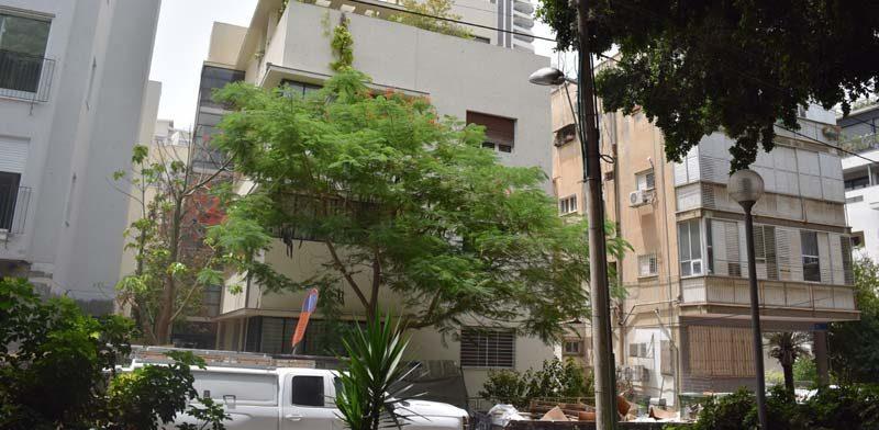 בכמה הושכרה דירת 4 חדרים בקומת קרקע במרכז תל-אביב?