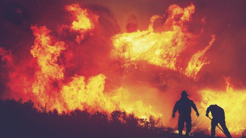 Forest Fire Under Control Near Beit Shemesh